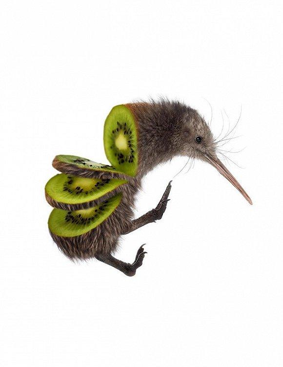 这些小动物变成的蔬菜水果