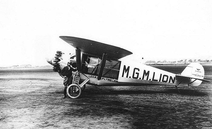 雷欧的笼子被建造在飞机里面