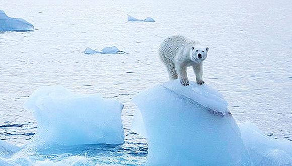 保护海洋动物的公约