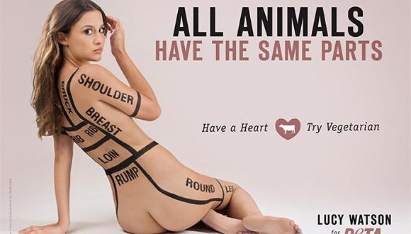 时尚公司最害怕的动物保护组织peta最近又发布了惊悚