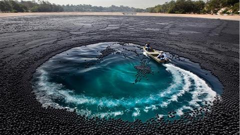【工业之美】为了保护水源,洛杉矶水电局把近1亿个黑球倒进了水库